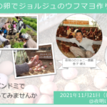【ヒトコト博】ジョニーの卵でジョルジュのウフマヨ作り体験(11月21日)